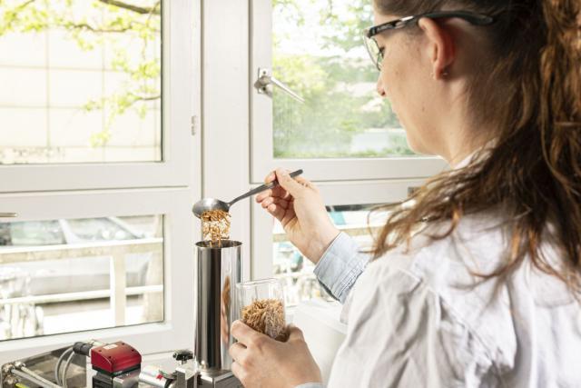 Backeigenschaften von Mehlen aus Insektenpulver