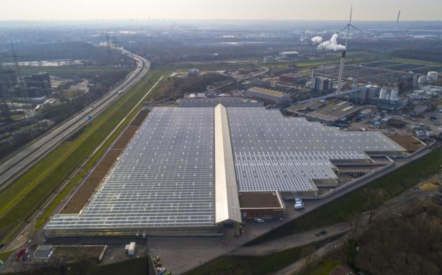 Solar-thermische Klärschlammtrocknungsanlage