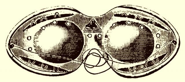Brillen für Automobilisten